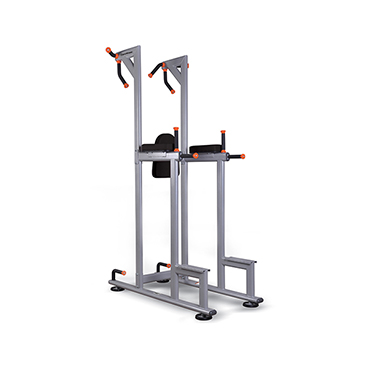 Profitness Profesyonel - Profitness BK139 Vertical Knee Raise
